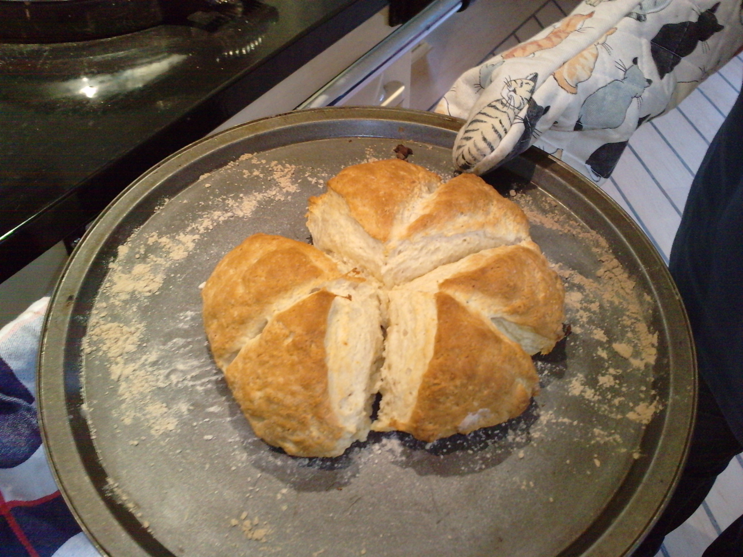 how to cook scones with lemonade